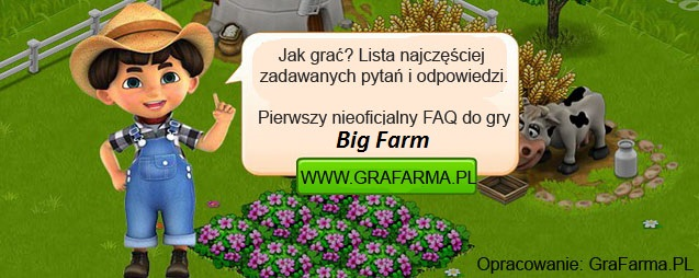 FAQ, poradnik do Big Farm